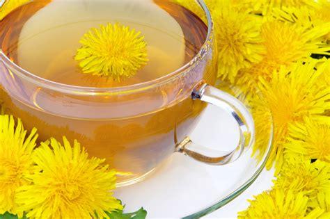 Does Dandilion Tea Detox Liver And Glaabladder by The Health Benefits Of Dandelion Tea Detox