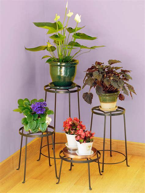 achla designs argyle plant stands gardeners supply