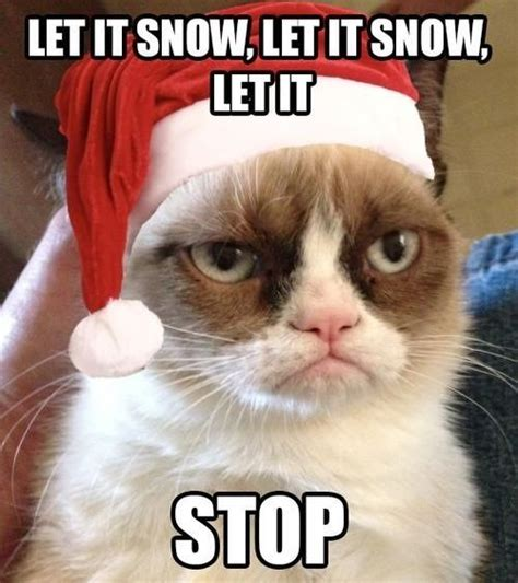 Christmas Cat Meme - grumpy cat christmas pics let it snow grumpy cat
