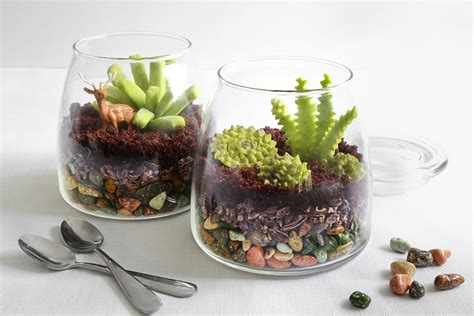 Handmade Terrariums - make an edible terrarium etsy journal