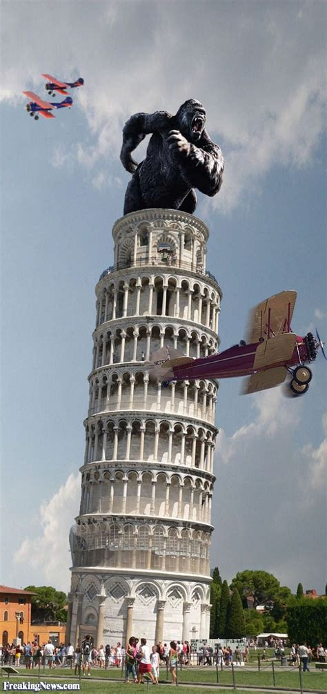 best cing in italy king kong on the leaning tower of pisa pictures