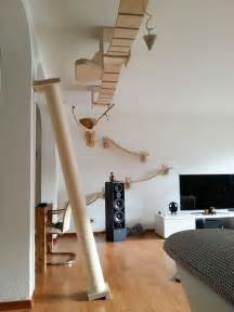 rooms transformed into overhead cat playgrounds with