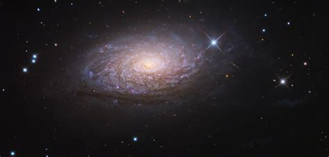 sunflower galaxy sunflower galaxy messier 63 m63 constellation guide