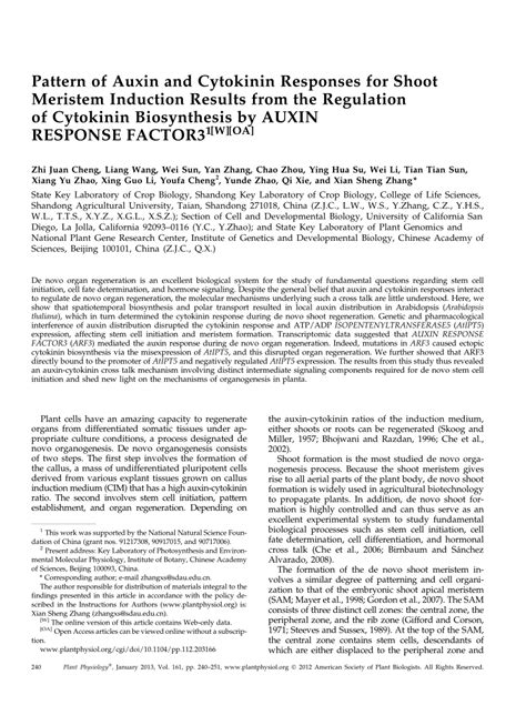 (PDF) Pattern of auxin and cytokinin responses for shoot