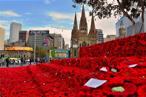 new year federation square melbourne a sea of poppies at federation square in melbourne