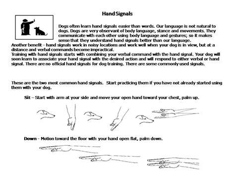 coeur dalene obedience coeur d alene by certified trainers serving idaho all breed k9