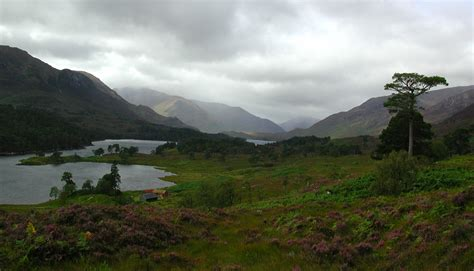 laird of glen affric file glen affric jpg wikimedia commons