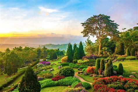 colorful hill beautiful garden of colorful flowers on hill stock photo