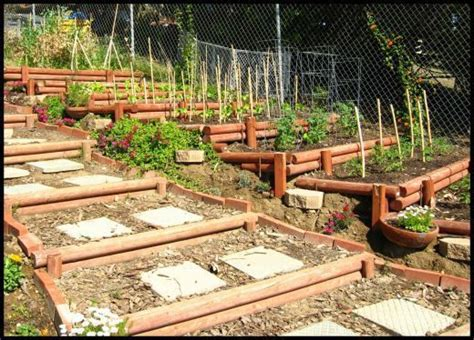 Terrace Vegetable Garden Steps Up A Slope Using Timbers Terraced Hillside