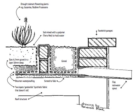 section of green roof energy efficient green roof section dwg green roofs