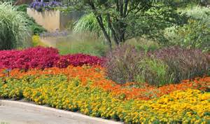 flower bed ideas for sun pictures beautiful black