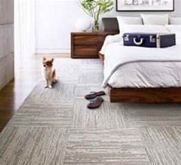 Bedroom Flooring Ideas bedroom flooring ideas best images collections hd for