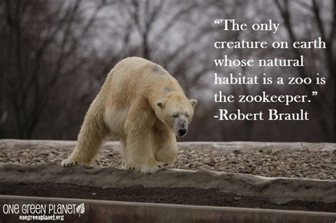 zoos quotes image quotes  hippoquotescom