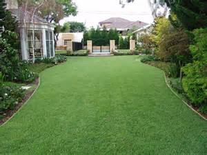 Backyard Empire Empire Zoysia Turf Photo Gallery