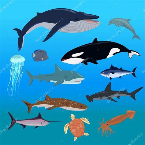 los animales marinos marine conjunto de la fauna marina de los animales acu 225 ticos