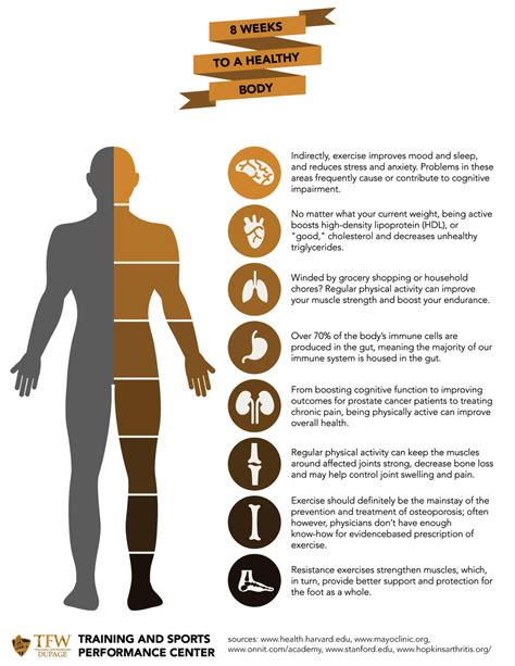 8 Negative Effects Of Exercise by Infographic Positive Effects Of Exercise Tfw Dupage