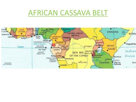 Supplier Casava Tunik By Adhieva policy support for commercialisation of cassava industry in ce