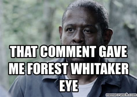 Meme Comment Photos - that comment gave me forest whitaker eye