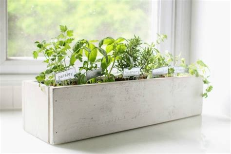 create  beautiful kitchen herb garden lovely