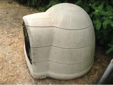 igloo style dog house igloo dog house large crofton cowichan