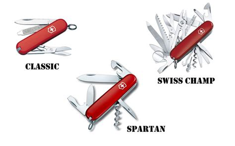 the swiss army knife of how to become the swiss army knife of fitness