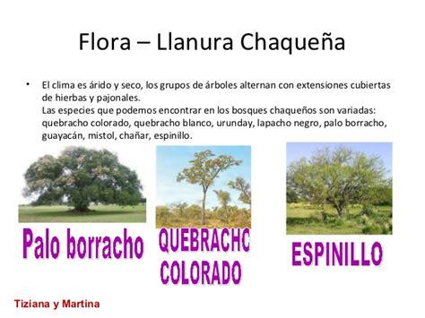 Galerry mapa de argentina blanco y negro