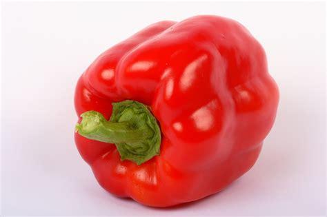 come coltivare i peperoni in vaso come coltivare i peperoni coltivazione