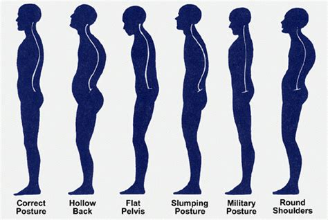 how to create rounded look to back of bob hair cut weight training for posture posture exercises