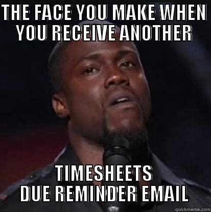 Reminder Meme - funny timesheet reminder email dogs cuteness daily