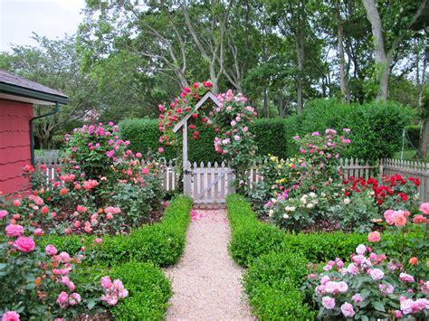 cottage garden design  roses wilson rose garden