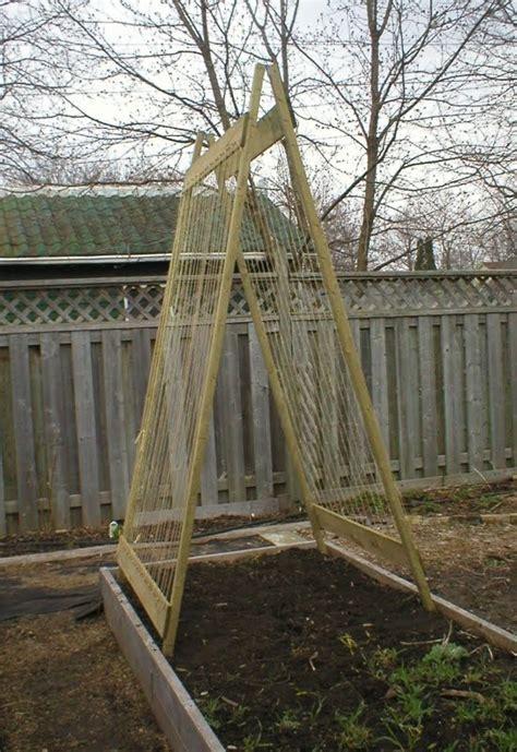 Trellis For Peas ewa in the garden 15 ideas of diy pea trellis