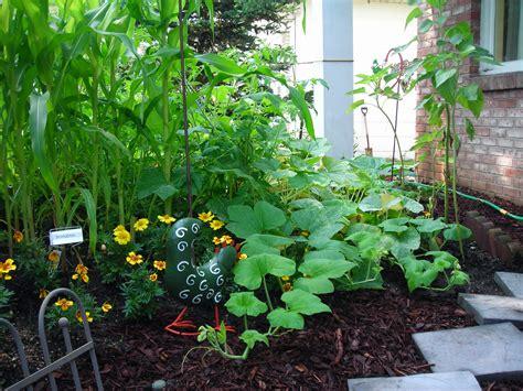 Vegetable Garden In Front Yard Amherst Buffalo Front Yard Vegetable Garden Design
