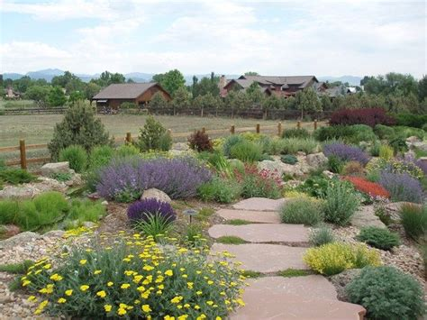 xeriscaping with large flat flagstones set closely together and the small space in between