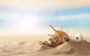 desk sand seashell sand wallpaper desktop h885902 hd