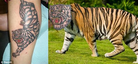animal tattoo fail terrible tattoos of bad portraits and animal drawings are