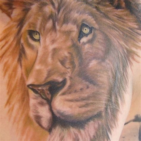 lion tattoo on your chest lion chest tattoo tattoos pinterest