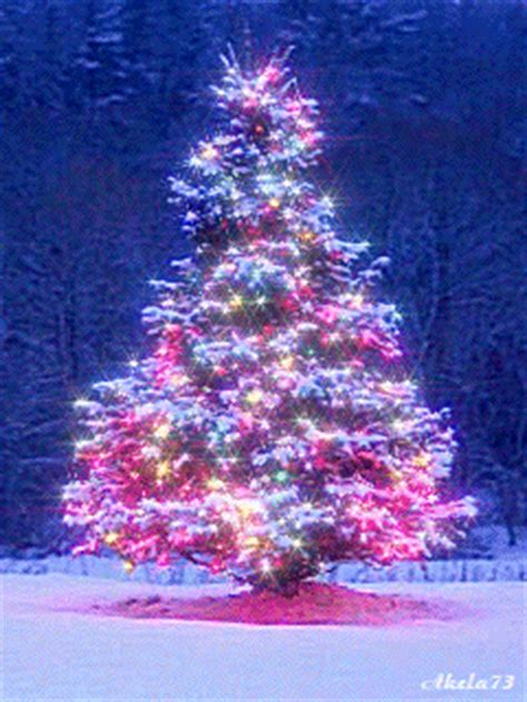 animated christmas tree images 30 amazing tree gifs to best animations