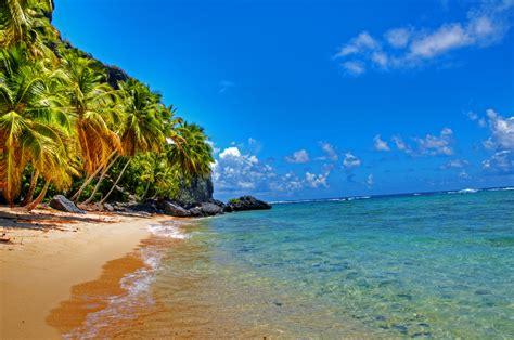 fond decran paysage mer baie rive le sable plage