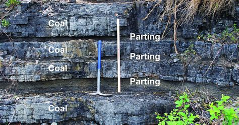 coal beds originate in coal kentucky geological survey university of kentucky