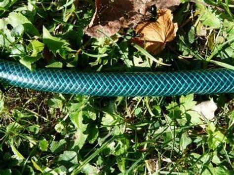tubo in gomma per giardino i migliori tubi per irrigazione da giardino guida all