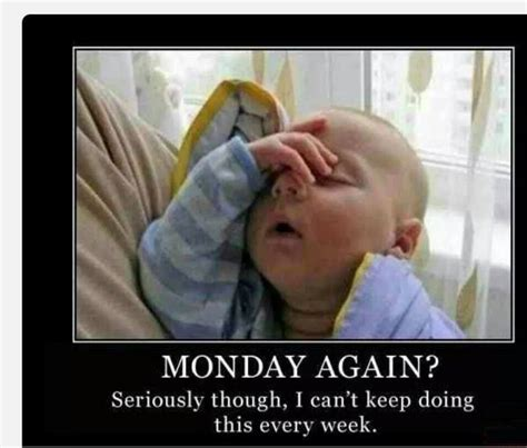 Mondays Meme - monday again funny meme gif