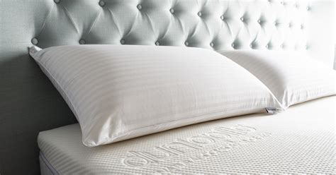 how long can bed bugs live without air best rated bed pillows best rated bed pillows which rates