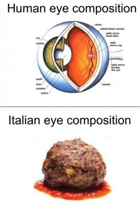 Italian Memes - 14 italian memes that will make you scream quot that s a spicy