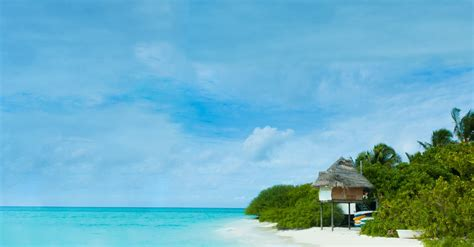 cheap flights to punta cana republic from baltimore md for 434 trip taxes