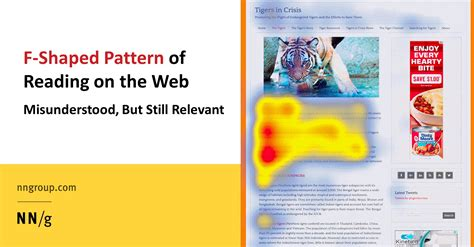 website reading pattern hciguy