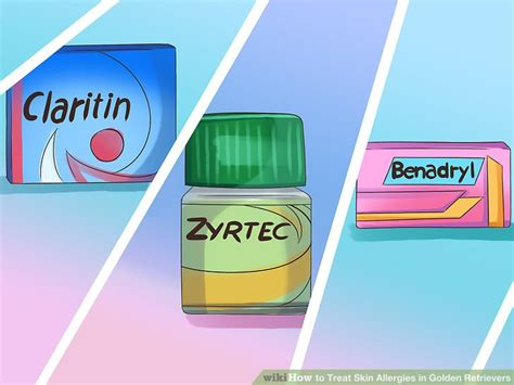 can i give my golden retriever benadryl 6 ways to treat skin allergies in golden retrievers wikihow