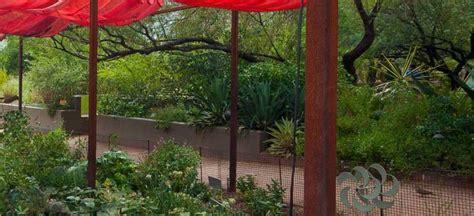 Desert Botanical Garden Old Town Scottsdale Scottsdale Az Botanical Gardens