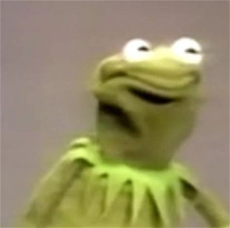 Kermit Meme My Face When - image gallery kermit angry