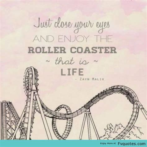 theme park quotes tumblr 44 best images about roller coaster on pinterest