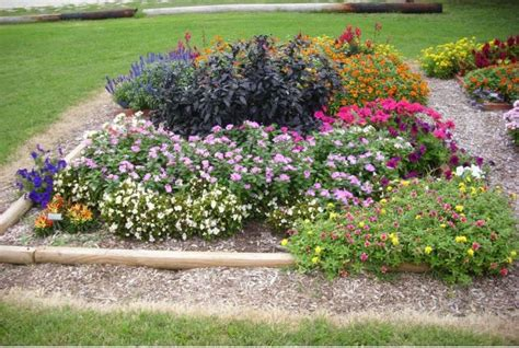 My Flower Garden Flowers In My Garden Jpg Hi Res 720p Hd